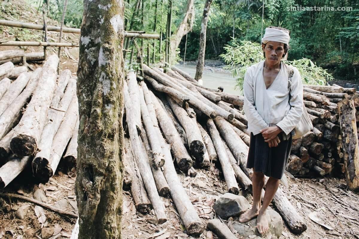 salahs atu mata pencahariaan masyarakat adalah mencari kayu di hutan