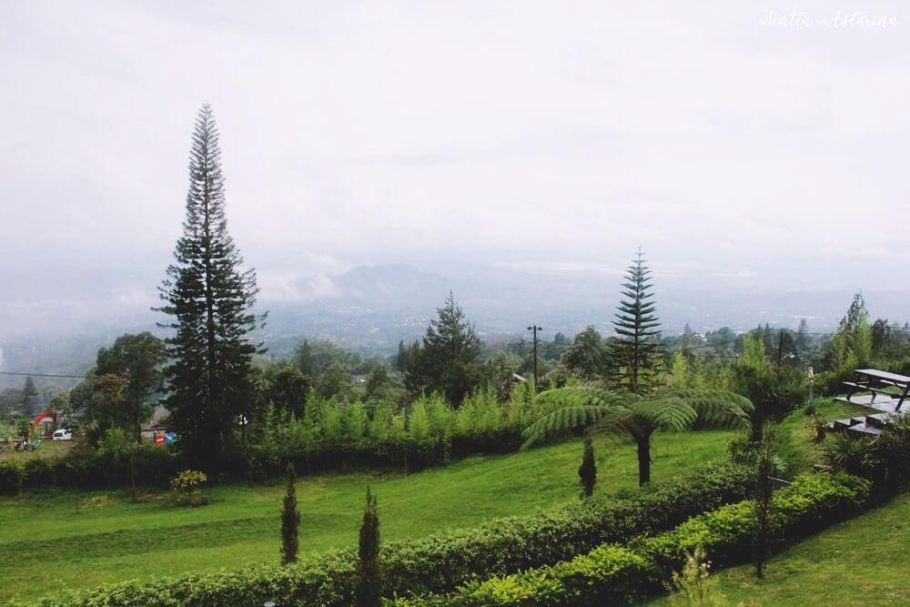 Menikmati Mendungnya Sore di Pondok Kopi Umbul Sidomukti Semarang